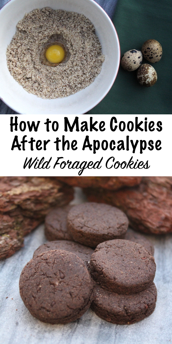 How to Make Cookies After the Apocalypse ~ Wild Foraged Cookie Recipes