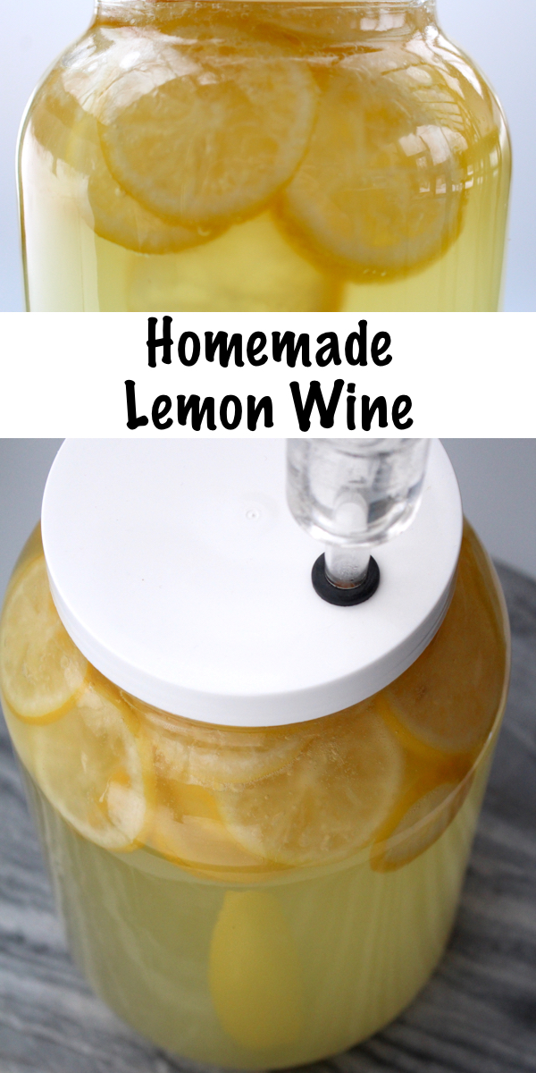 Homemade Lemon Wine Recipe for Home brewing. Lemon wine tastes like sipping summertime and it's really easy to make at home with just a few simple ingredients. #wine #recipe #beverages #homemade #lemon #fermented #fermenteddrink