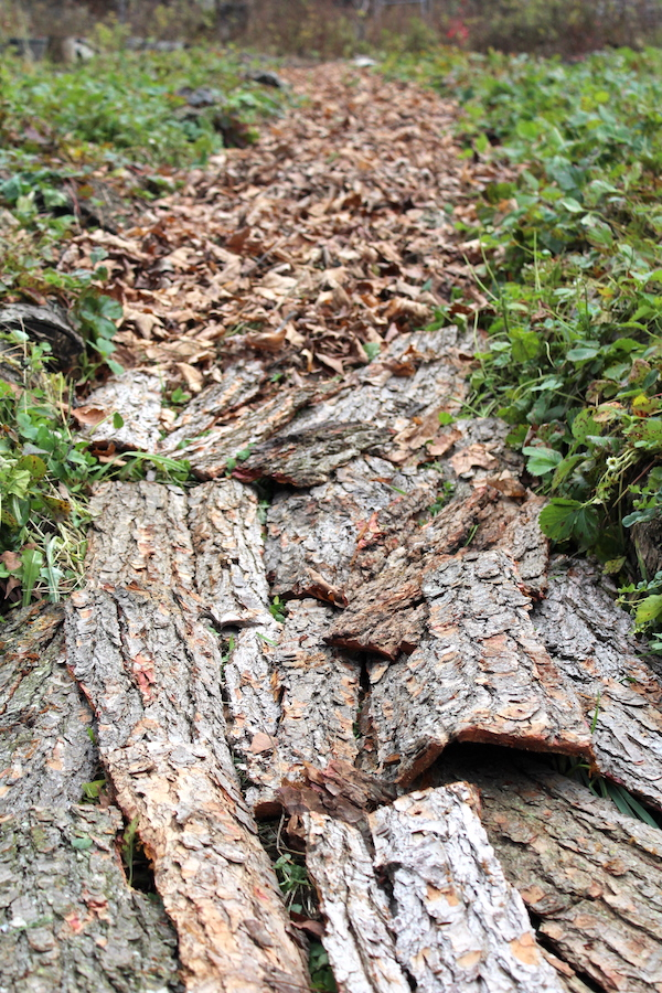 How To Make Bark Mulch At Home