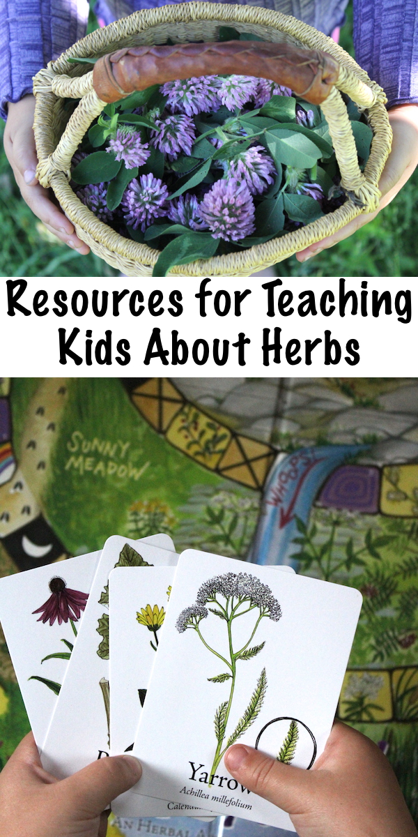 Resources for Teaching Kids About Herbs ~ Teaching Herbalism to Children ~ Resources and Tools for a Child's Herbal Education #herbs #herbalist #herbalmedicine #homeschool #homeschooling #outdoors #nature #natureeducation