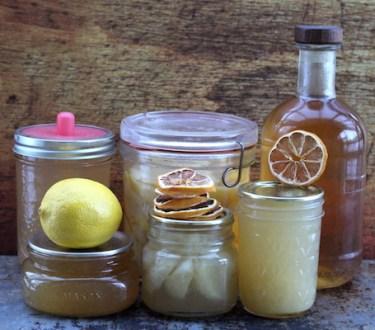 20+ Ways to Preserve Lemons