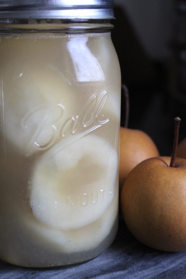 Canning Asian Pears ~ Home canned asian pears are easy to make, and it's a wonderful way to preserve a bumper crop of pears. Asian pears are low acid, but with a little lemon juice they're still safe for canning