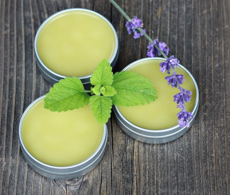 Herbal No Bug Balm with Lemon Balm from Grow Forage Cook Ferment
