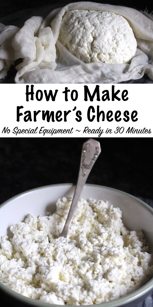 How to Make Farmer's Cheese ~ No special equipment and ready in under 30 minutes, homemade farmer's cheese is an easy beginning cheesemaking recipe. #cheese #recipe #homemade #diy #farmerscheese #beginner #easy