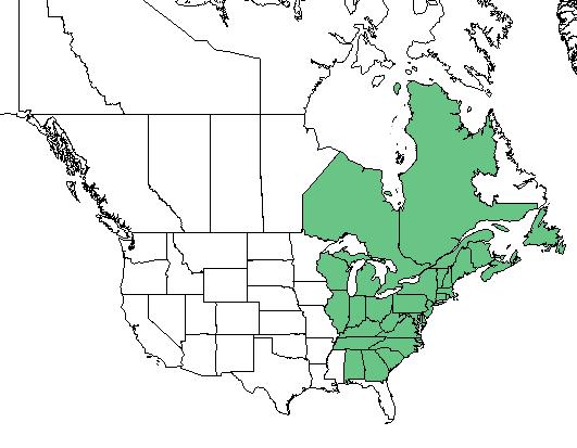 Native Range for Viburnum nudum L. var. cassinoides