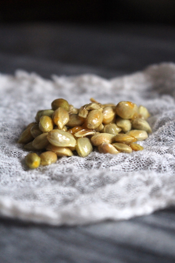 Natural Citrus Seed Pectin for Canning