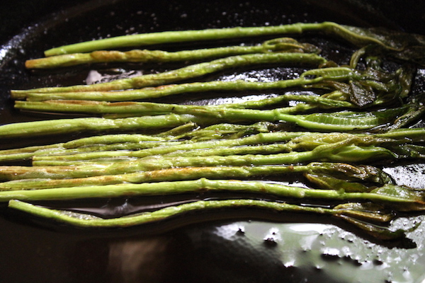 Cooking Milkweed Shoots