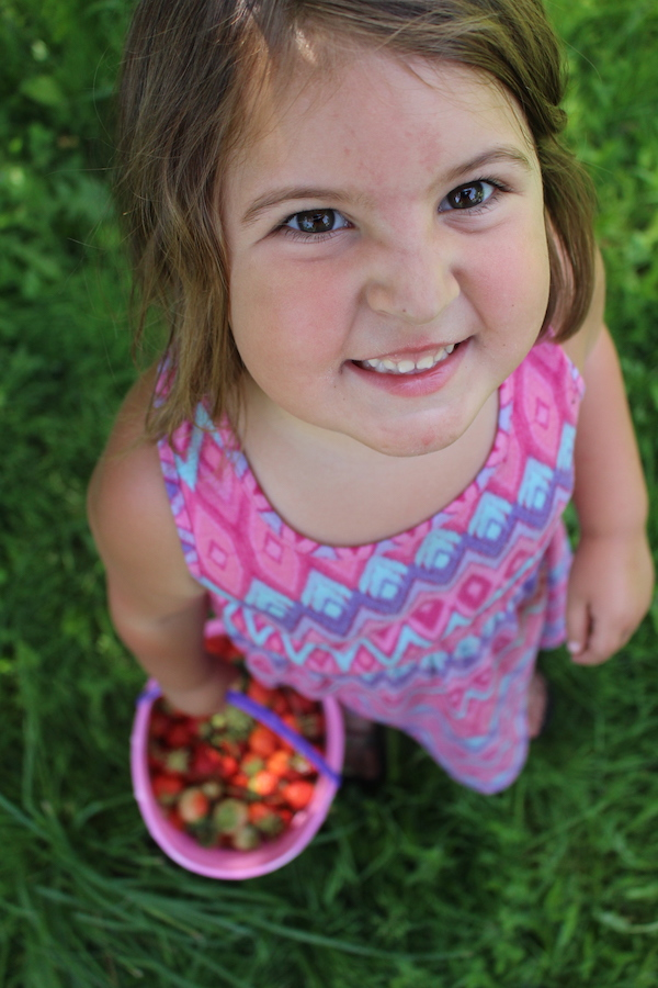 Child holding bucket of strawberries destined to become strawberry jelly
