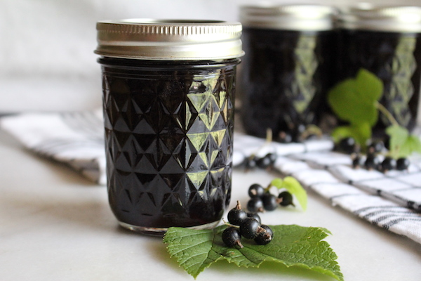 Homemade Blackcurrant Jelly ~ No pectin added recipe for canning