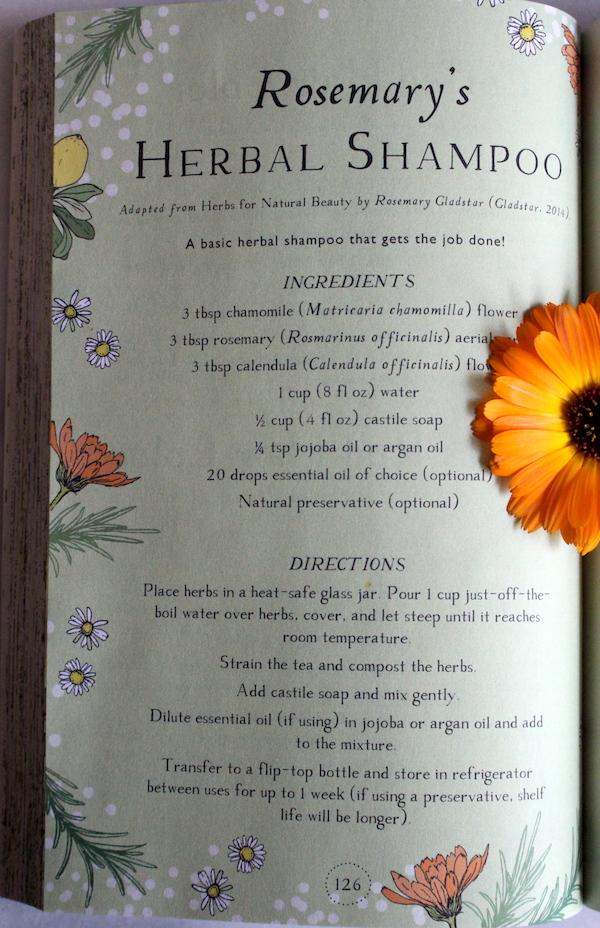 Rosemary Gladstars Herbal Shampoo Recipe