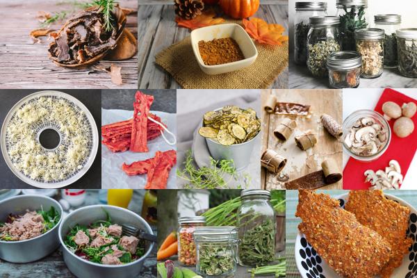 9+ Dehydrator Recipes ~ Food Dehydrator Recipes for Fruit