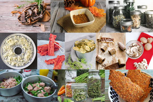 Collage of healthy food dehydrator recipes