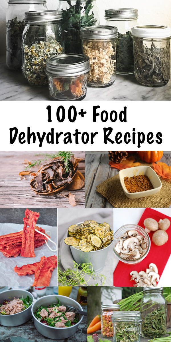 100+ Food Dehydrator Recipes ~ Food Dehydration is one for the oldest (and healthiest) methods of food preservation. Create healthy dehydrated sancks for your family, and make busy weeknight meal planning easy with simple dehydrated soups and meals. #dehydrator #foodpreservation