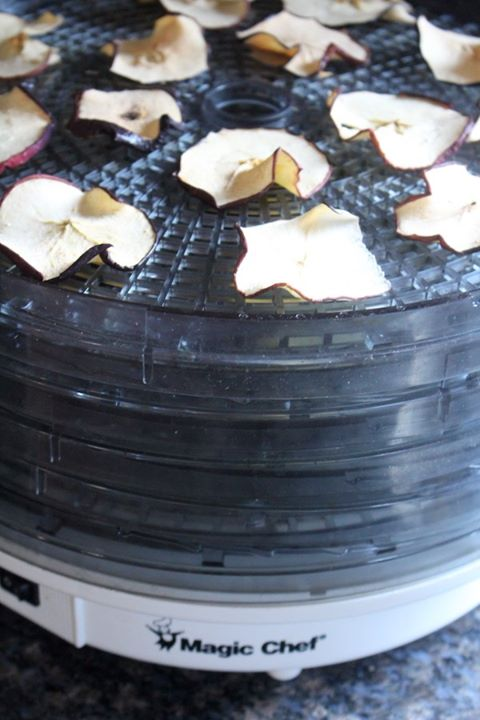 Inexpensive food dehydrator with stacking trays.