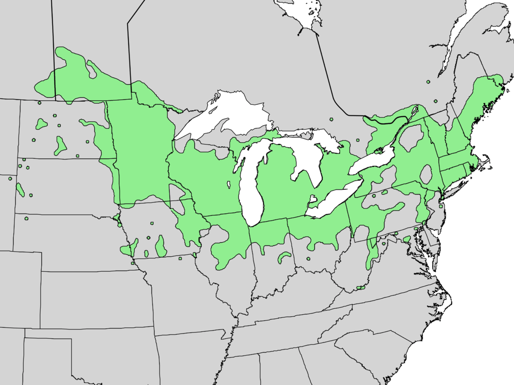 Viburnum lentago Range Map