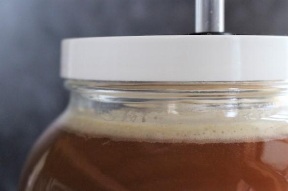Apple cider vinegar after 24 hours of alcoholic fermentation