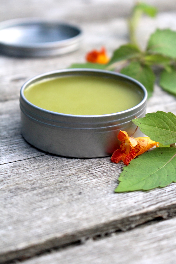 Jewelweed salve is another one that's made with fresh (rather than dried) herbs. Jewelweed is a herbal treatment for bug bites and poison ivy.