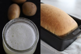 Homemade Yeast starter from potatoes, and easy potato bread recipe