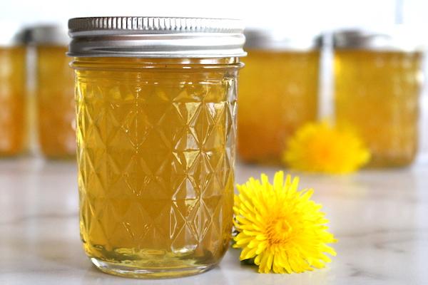 Homemade dandelion jelly