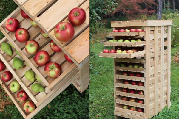 DIY Apple Rack