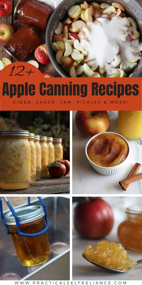 12+ Apple Canning Recipes ~ Learn new ways to preserve apples with this list of tasty apple canning recipes.  Everything from slices to sauce, pickles and pie filling.