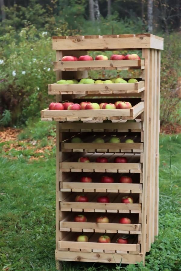 Homemade apple storage rack