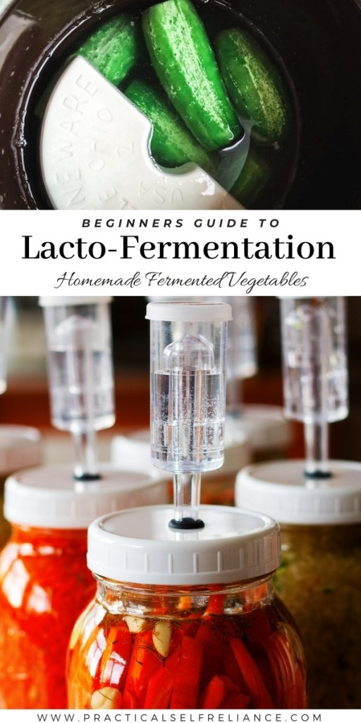 Beginners Guide to Lacto-Fermentation