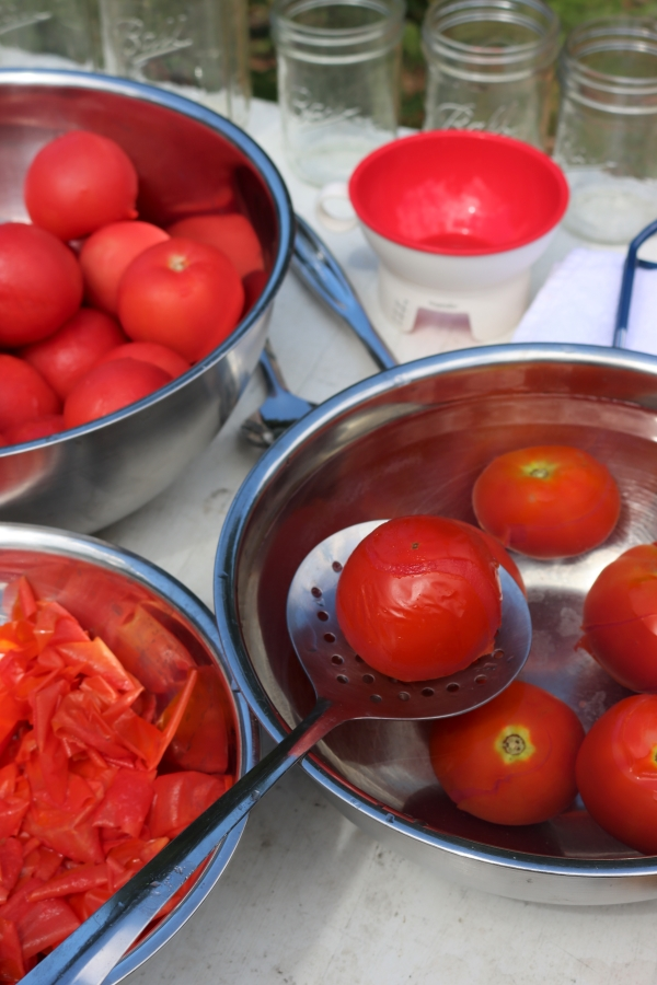 Cooling Tomatoes after blanching