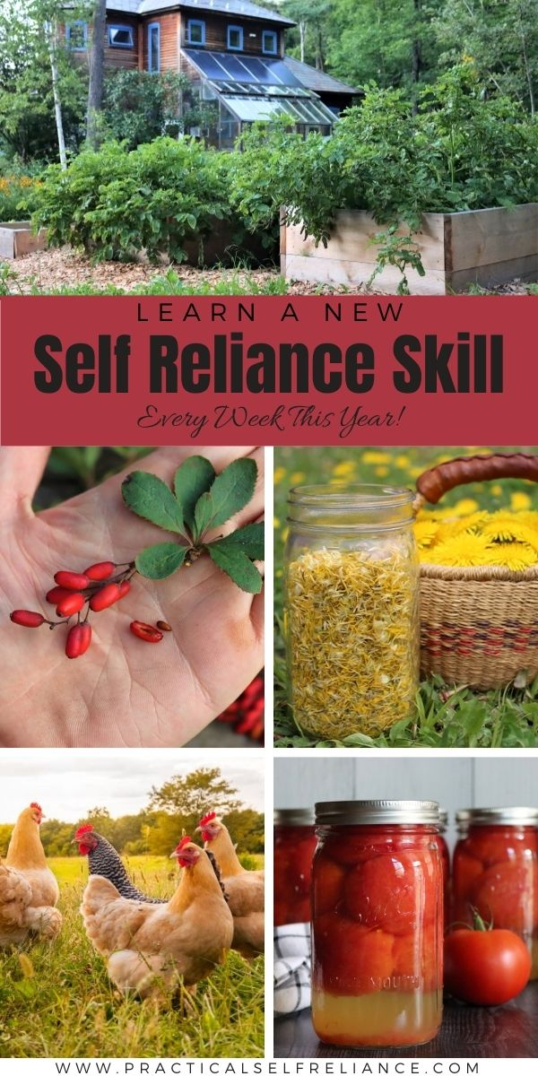 Back to Basics: Learn a New Self Reliance Skill Every Week!
