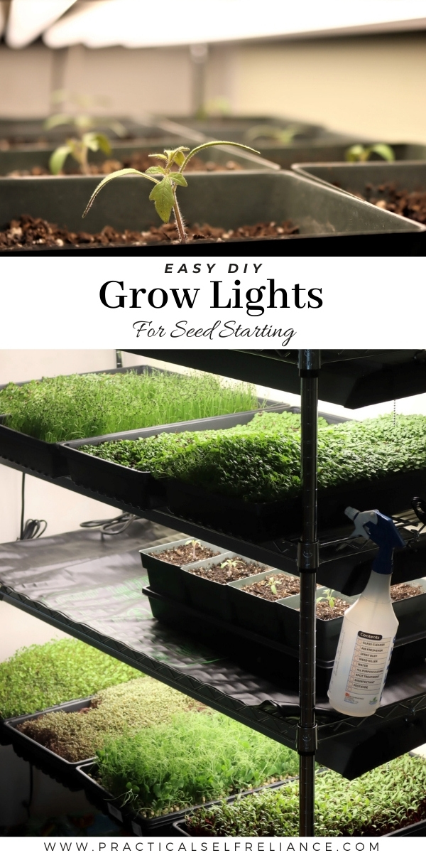 DIY Grow Lights for Seed Starting