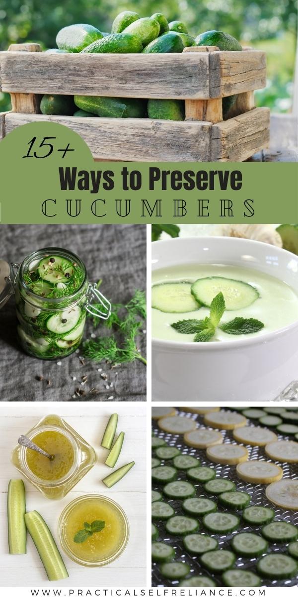 Ways to Preserve Cucumbers