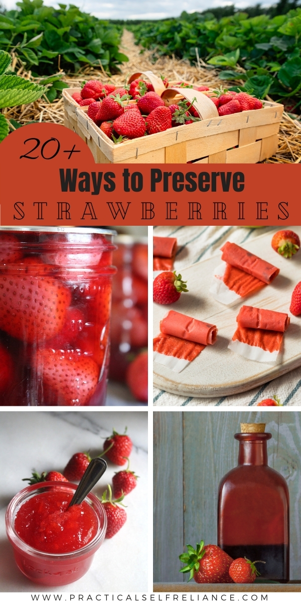 Ways to Preserve Strawberries