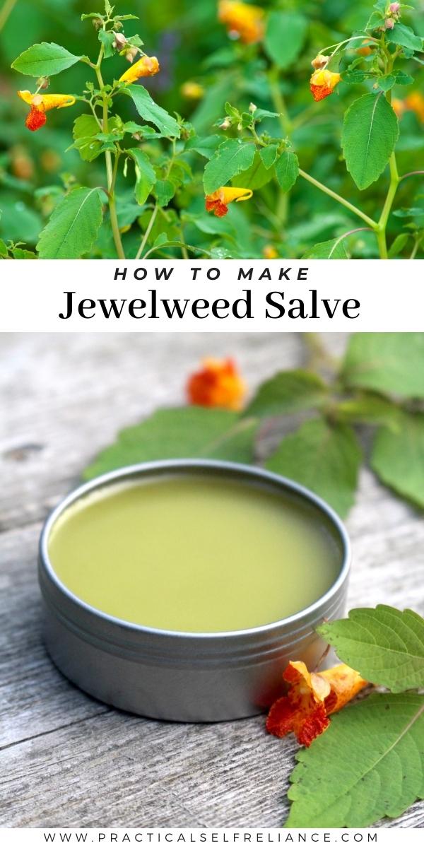 How to Make Jewelweed Salve