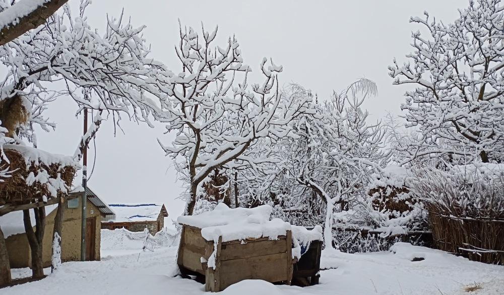 हिमपात र चिसोका कारण विकास निर्माण ठप्प