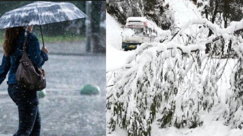 वर्षा र हिमपात कृषकमा छायो खुशी
