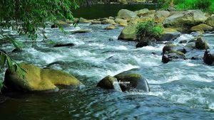 sungai kali pelus purwokerto