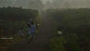 fotografi panorama pemandangan alam desa banyumas