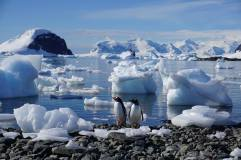 photos_and_videos/AntarcticaPenguins_10155338149716869/18155882_10155338153991869_4602299465007329876_o_10155338153991869.jpg