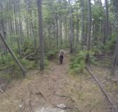 Sherpa Logan making it up the trail