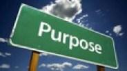CoP3 Purpose