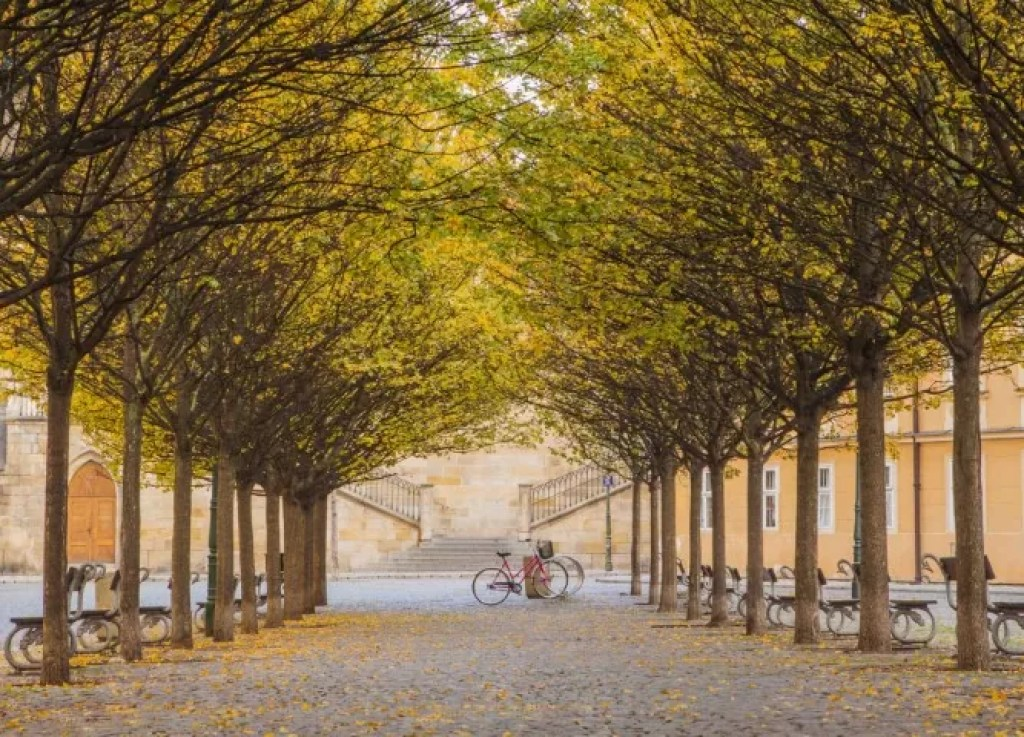 Kampa Island is one of the loveliest parts of the Prague
