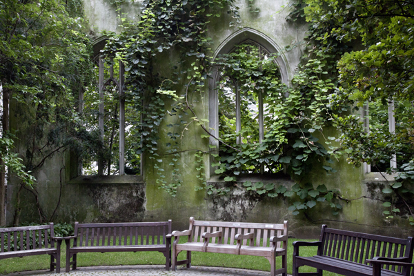 Nature in the city – St. Dunstan's in the East