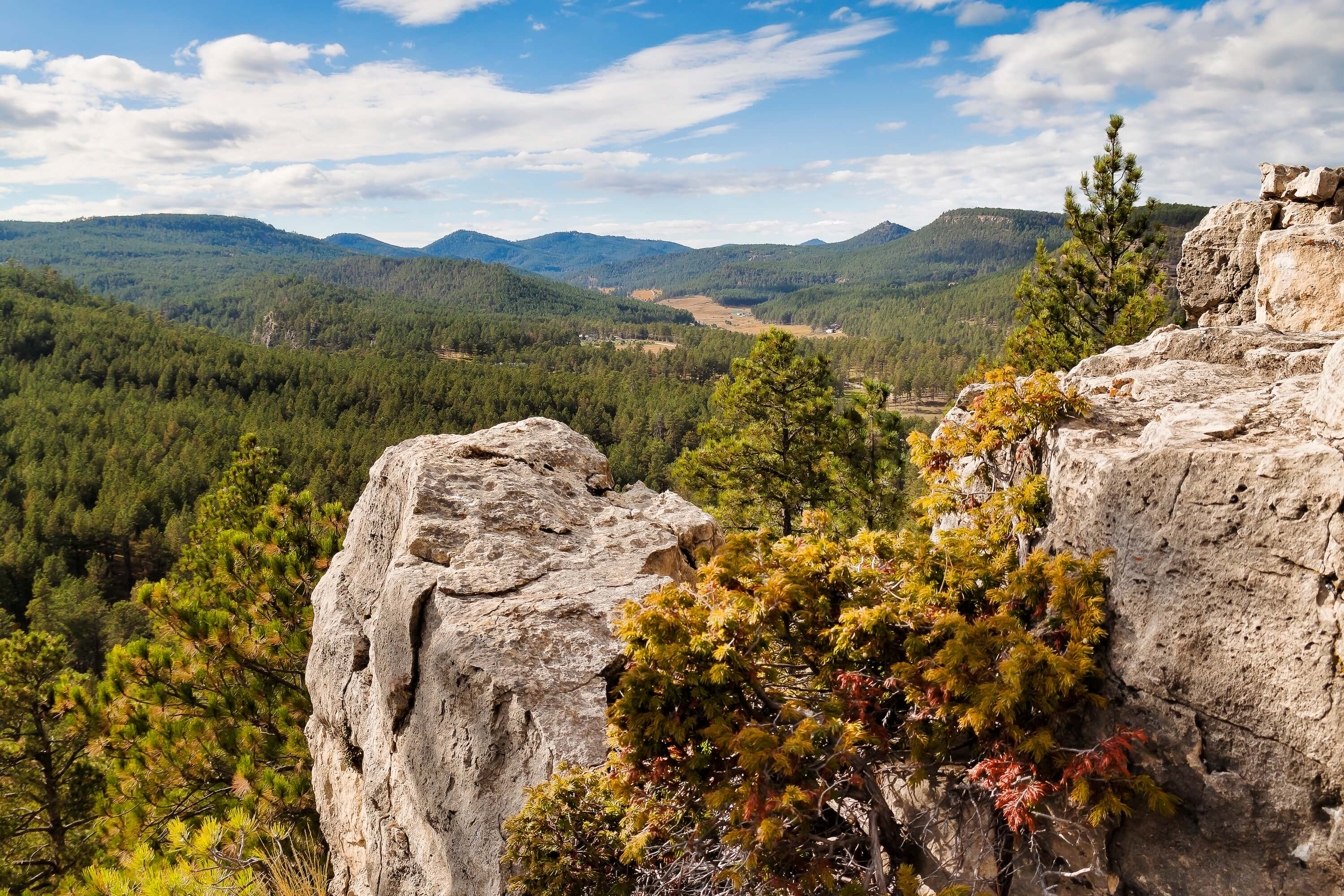 A late summer view of the Bogus Jim Canyon in the Black Hills