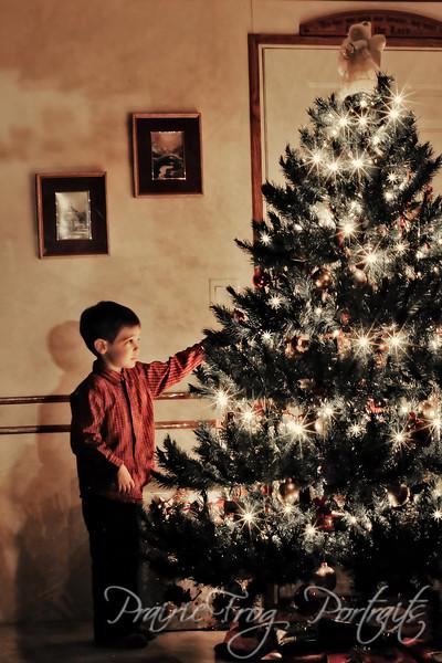 Keegan and The Christmas Tree
