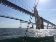 Sailing underneath the Chesapeake Bay Bridge