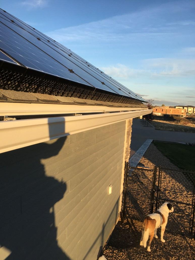 generating solar power in regina