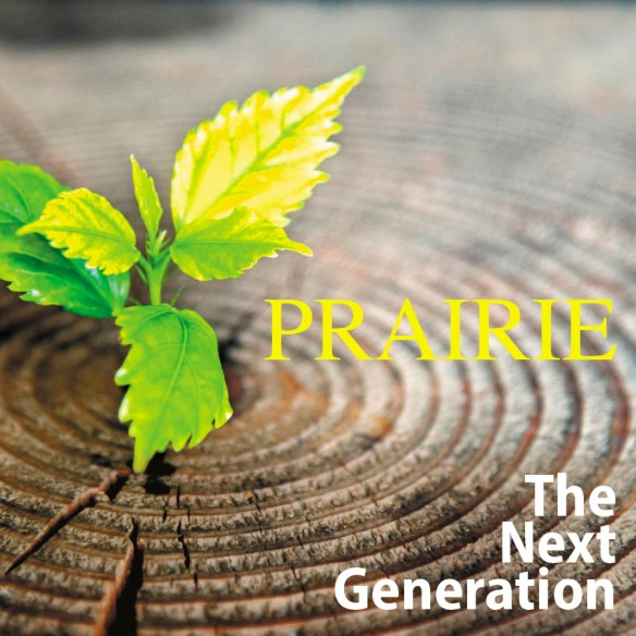 Prairie Vision / Appreciative Inquiry