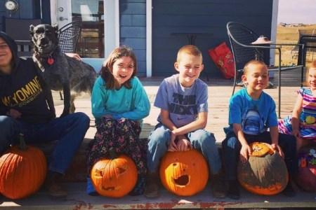 Cowkids pumpkins