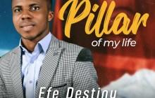 [MUSIC] Efe Destiny - Pillar of My Life