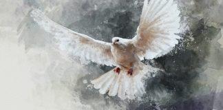 [MUSIC] Sarah Téibo - Spirit Come